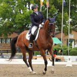 Bugsy the one-eyed thoroughbred competing at Grand Prix